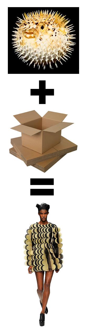 puff-cardboard-kane